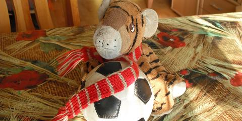 Tiger ist Manager und Spielerberater.